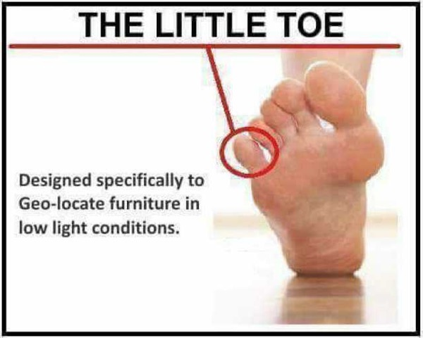 The little toe designed specifically to geo locate furniture in low light conditions pQvav